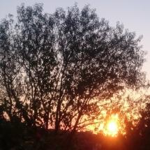 Изгрев от къща 2, Бриз, Варна