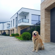 куче, Чопър, гаражна врата, Hörmann