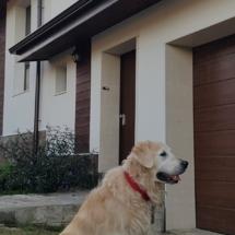Куче Чопър